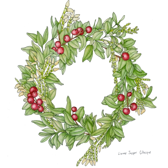 Christmas Wreath in Watercolor and Ink