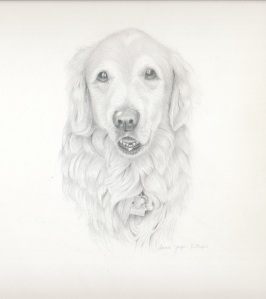 Maximus in Graphite